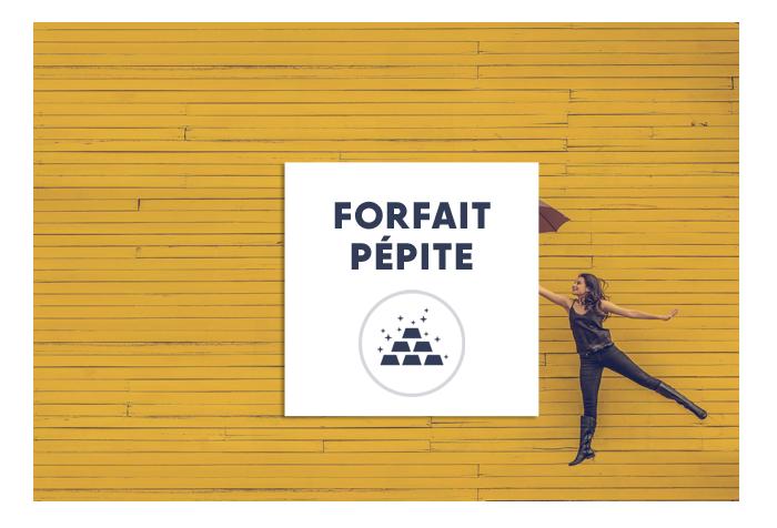 Pepite-3-1
